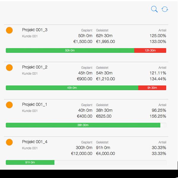Projektzeiterfassung - Übersicht Projektcontrolling